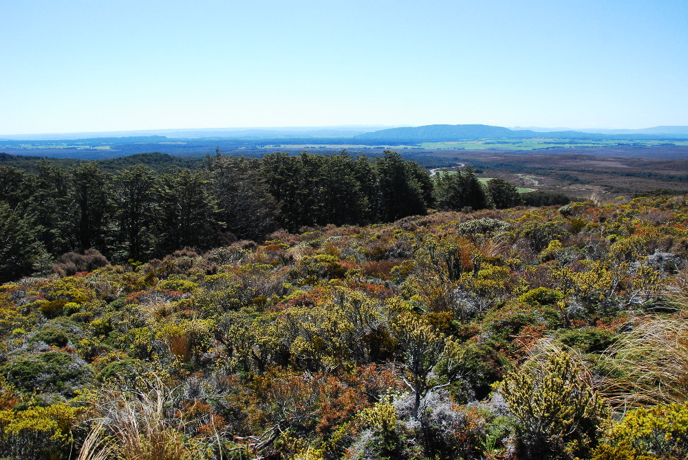 Randonnée dans le parc de Tongariro