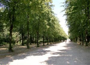 Parc de Hofgarten