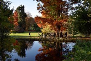 Point d'eau du parc de l'Arboretum