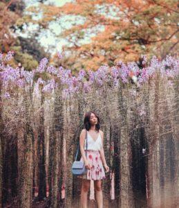 @dreachong dans un champ de fleurs