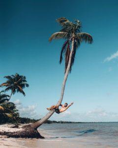 Instagrameur sur un cocotier
