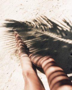Ombre des palmiers sur instagram