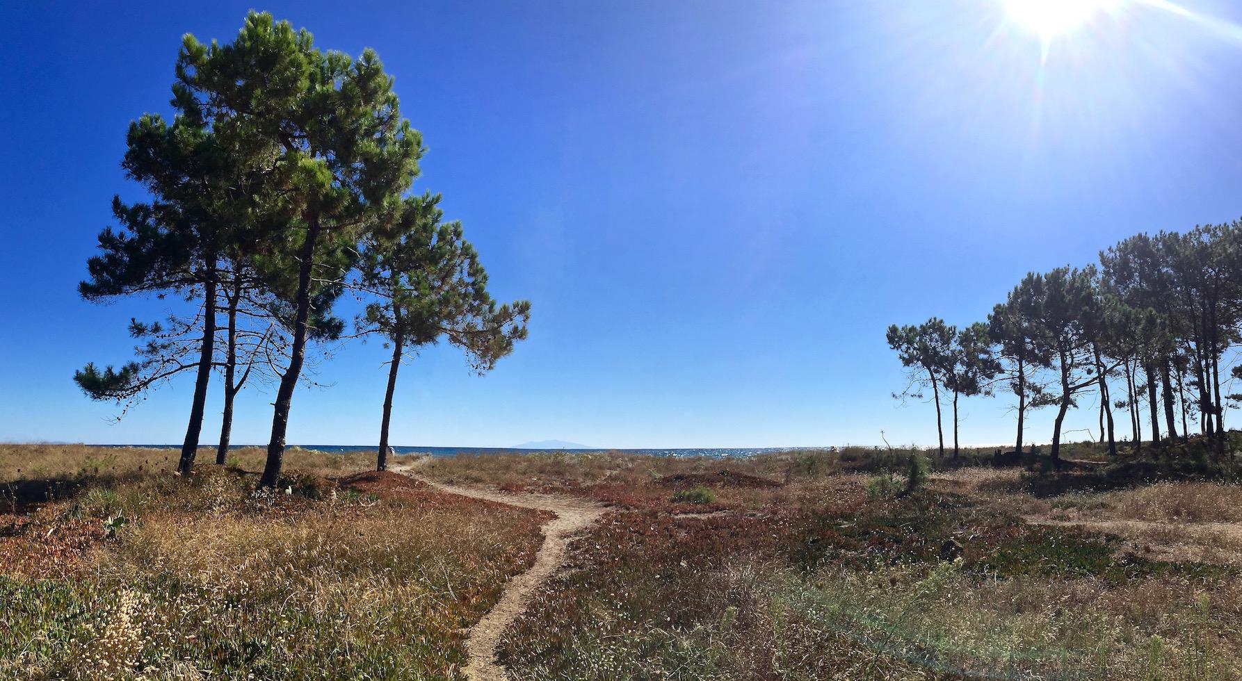 Visiter la Corse : plage de la Marana