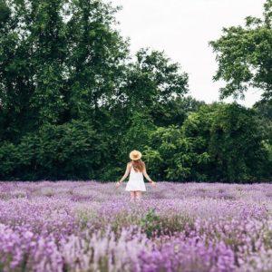 @bestjobers dans un champ de fleurs