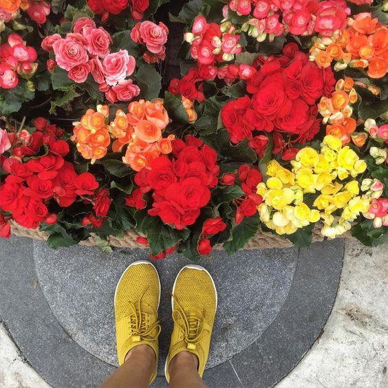 Bouquets de fleurs par @karin_samsonova