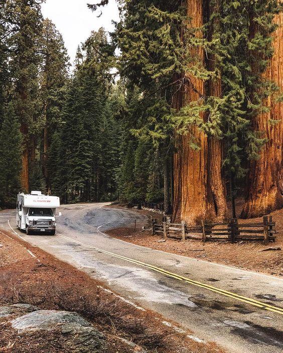 Van road trip par @worldelse