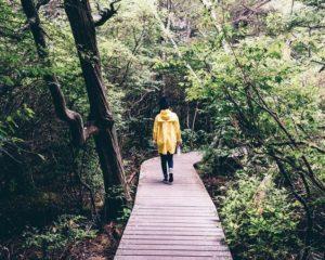 Instagram ciré jaune voyage