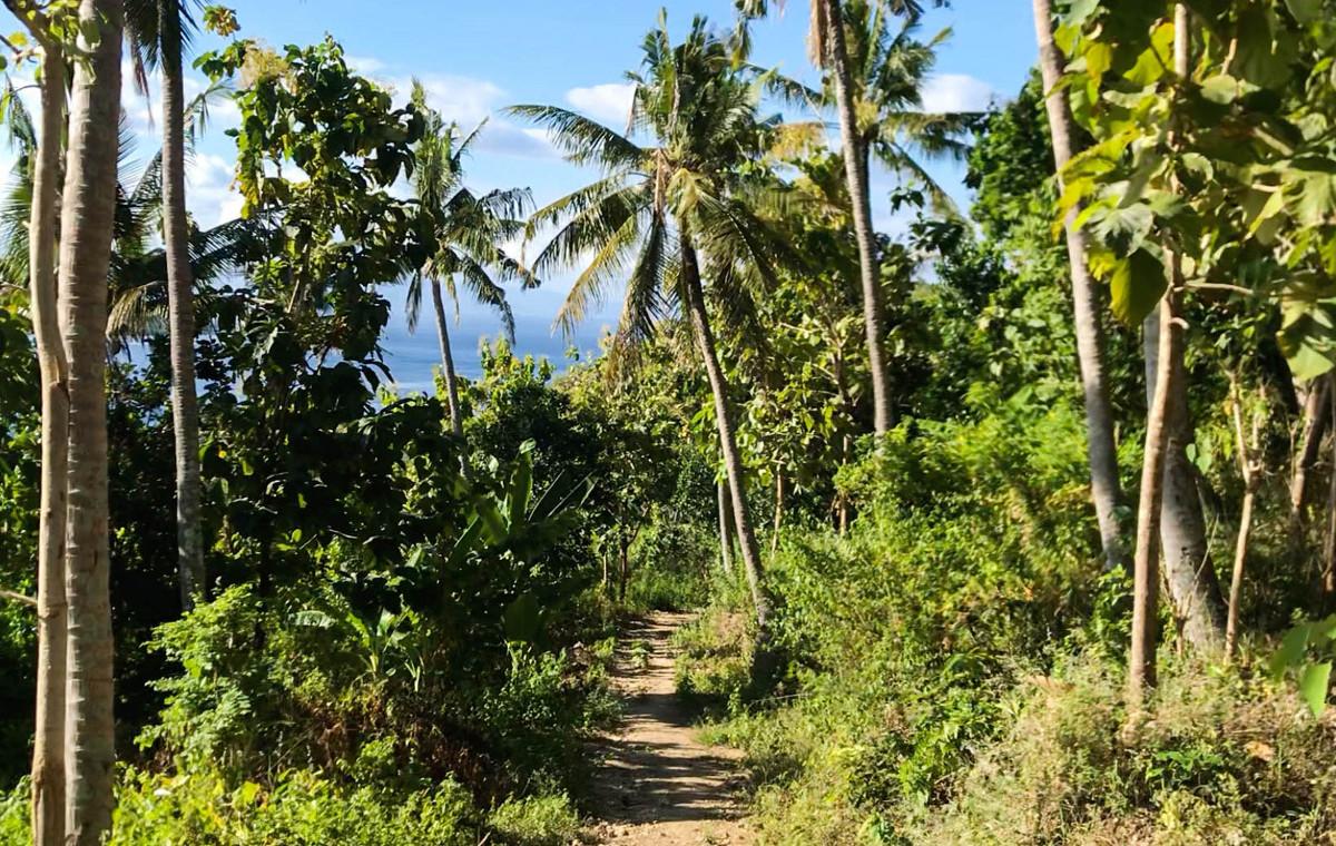 Se déplacer à Nusa Penida